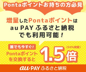 au PAY ふるさと納税
